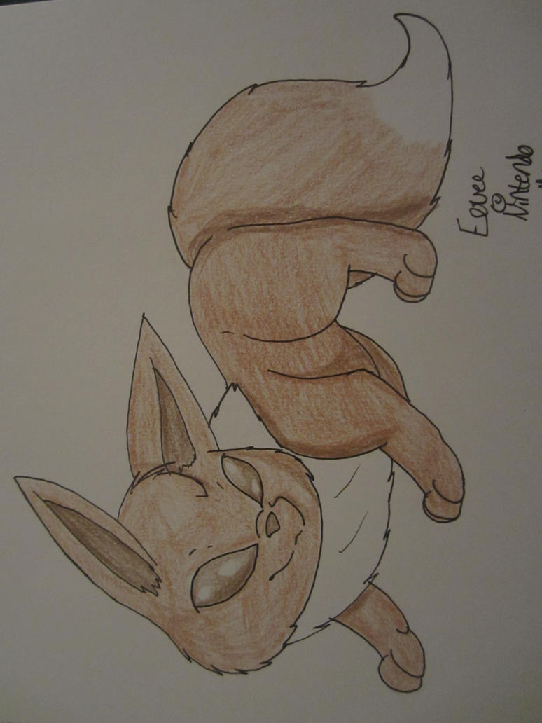 Eevee by CollectionOfWhiskers