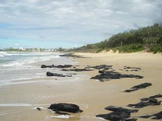 Beach by southernmari