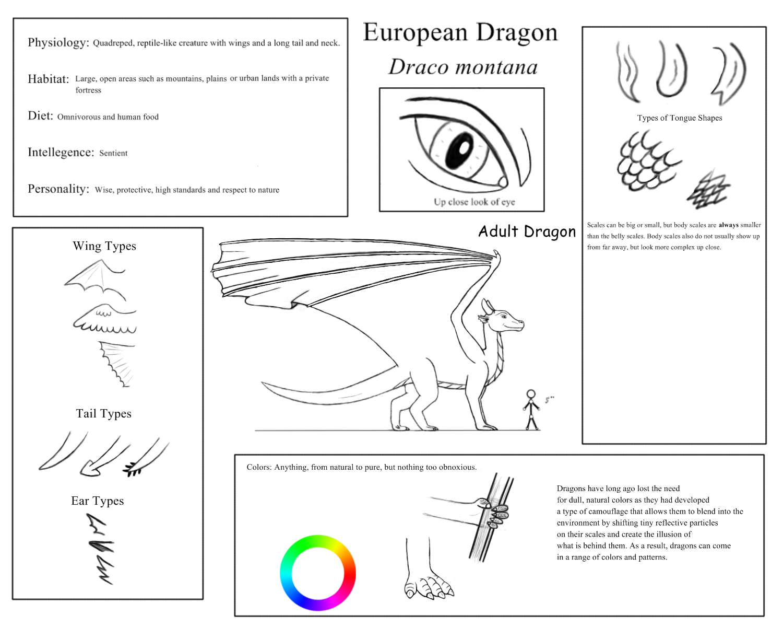european dragon species sheet by dragoness100 on deviantart