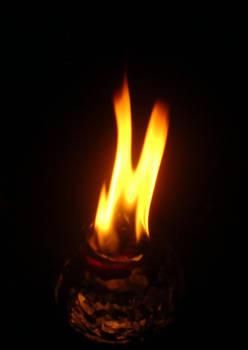 Fire M