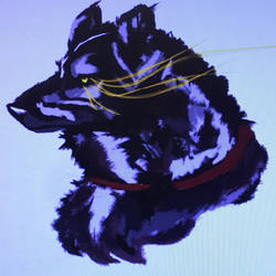 Wolf  by Zero669