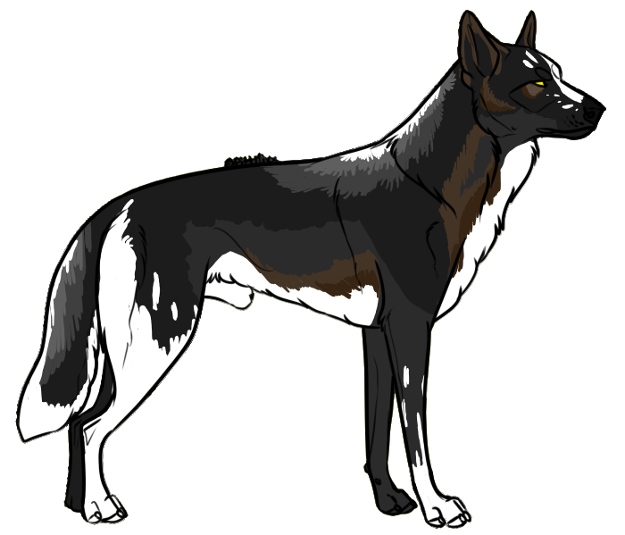 Wolf Auction by Zero669
