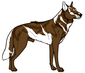 Wolf Auction 2 by Zero669
