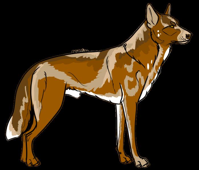 Wolf Auction 3 by Zero669