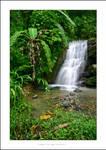 C4D Jamaica Waterfall 1 by cravingfordesign
