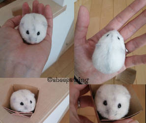 Needle felted hamster by sheeps-wing