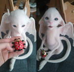 White Dragon baby