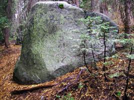 Landscape Stock - Boulder 7330 by DigitalButterflyy