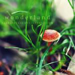 Wonderland by ClefairyKid
