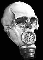 skull gas mask by shoma2097