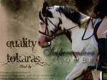 Quality Tokaras-Barn Texture