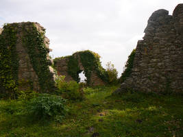 Overgrown old wall by Angeyja