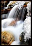 The Freezing Creek