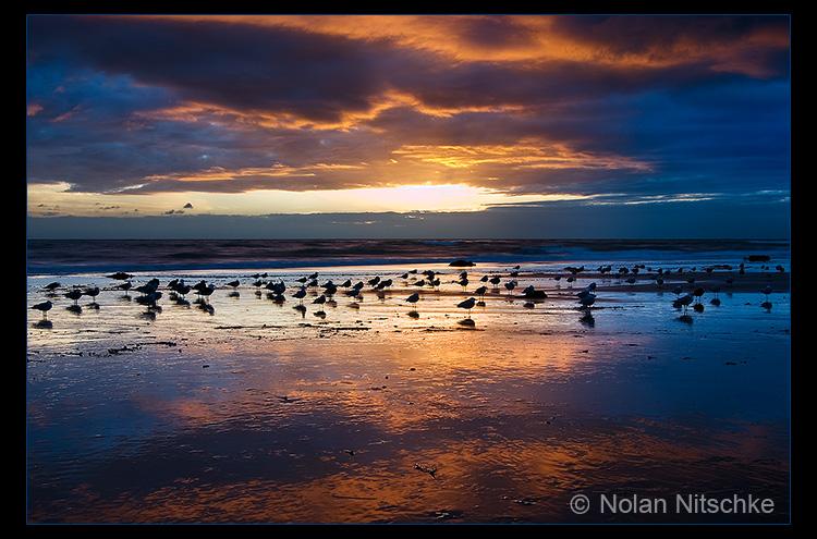 Ventura Beach by narmansk8