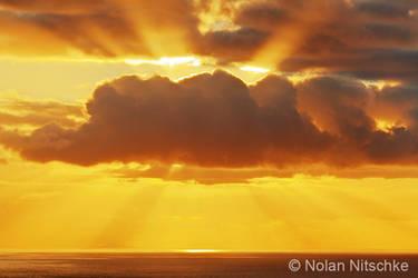 Hawaiian Sun Rays by narmansk8