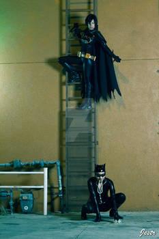 Bat VS. Cat pt. 2