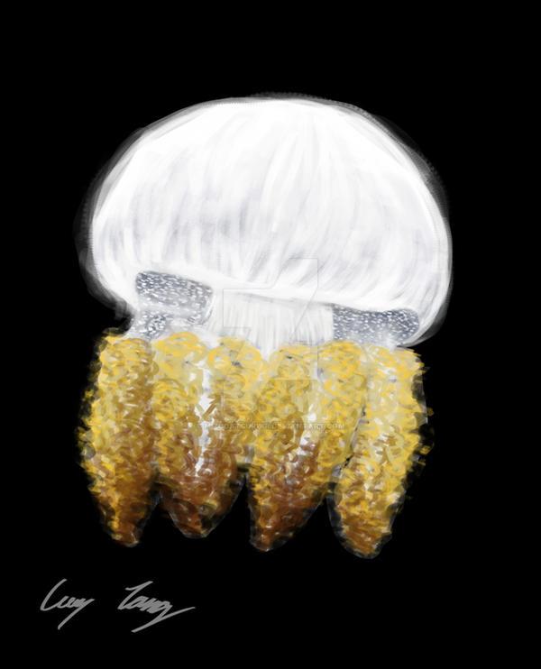 Day 2: Breede River Jellyfish by mizudatsurugi