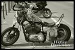 Harley Davidson by ponyfleute
