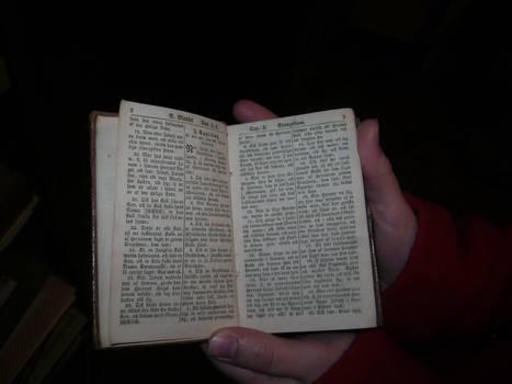 200 year old Swedish Bible