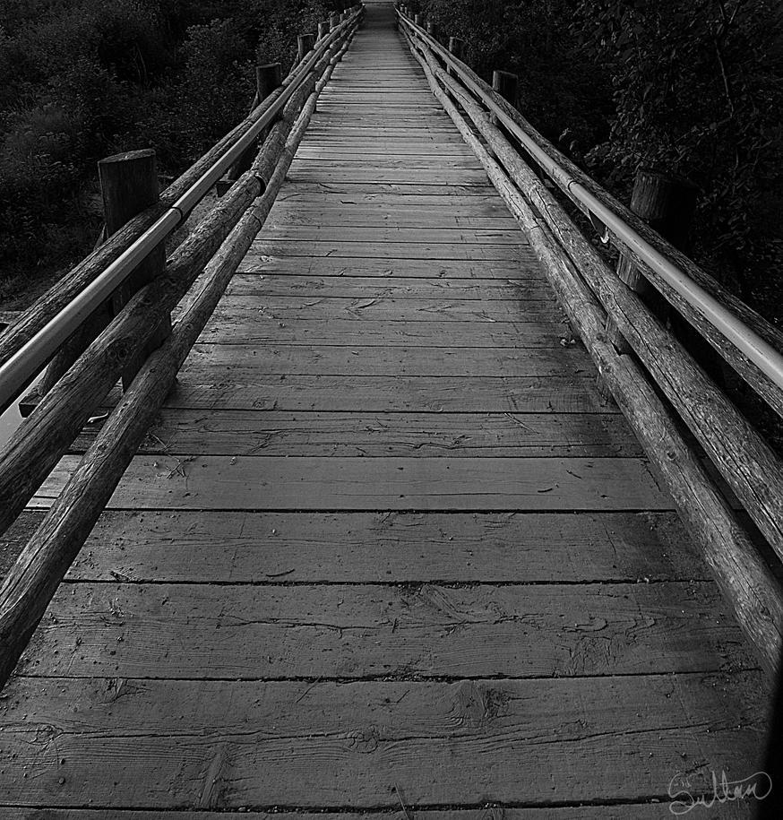 Bridge by RavenGraphics