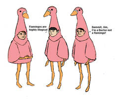 'We're flamingos.'