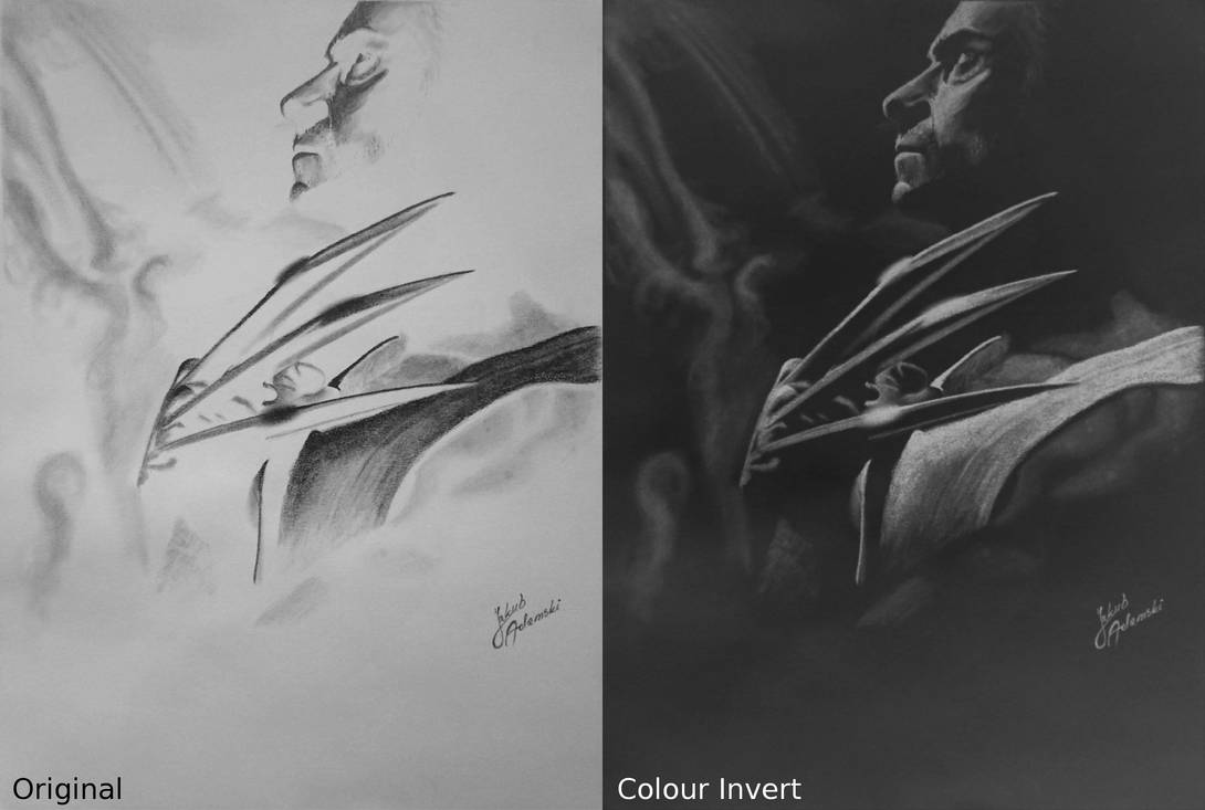 Hugh Jackman :Logan negative drawing by JakubQaazAdamski