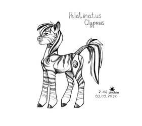 Palatinatus Clypeus