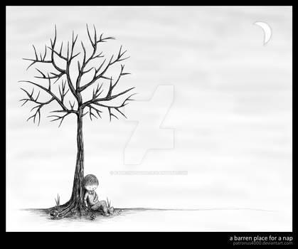 a barren place for a nap