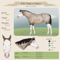 RWS What A Chance Referance Sheet - HEE by CanadianMule