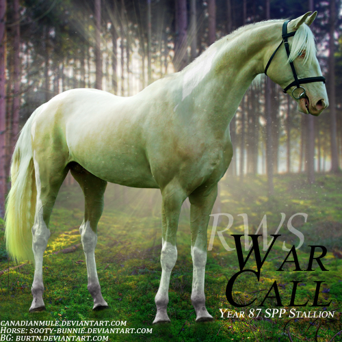 RWS War Call by CanadianMule