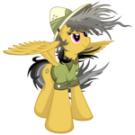 Daring Do - Windy Perspective
