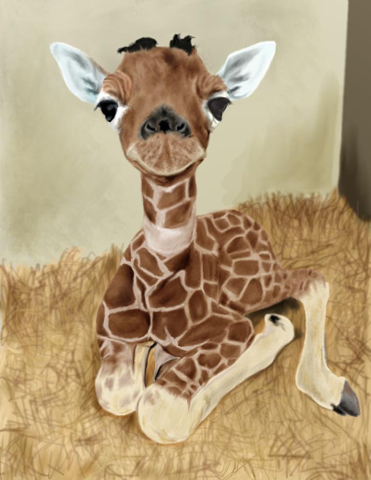 Baby giraffe by Rapsag on DeviantArt