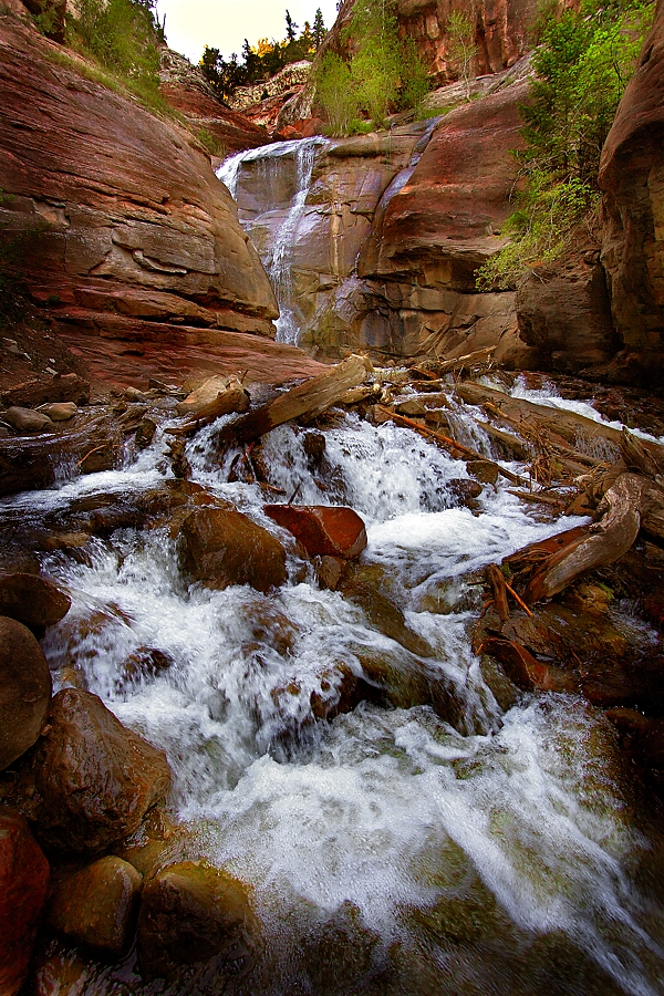 Roadside Creek - CO by BeauNestor