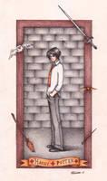 HP Card : Harry Potter