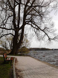 The bench and lake by Silver-Kaja
