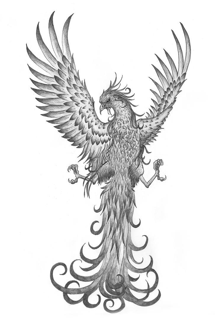 Phoenix Tattoo by Tribalchick101