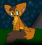 FoxKit Warrior Cat OC by MotherLemon on DeviantArt
