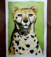 Cheetah - Watercolor by Glaubart