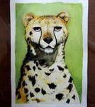 Cheetah - Watercolor