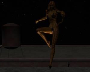 Tigra in the night 15