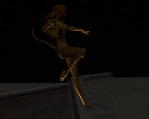 Tigra in the night 16