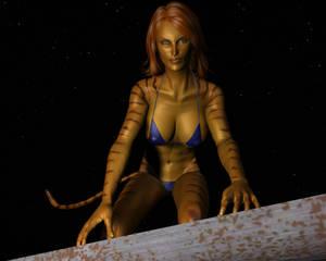Tigra in the night 19