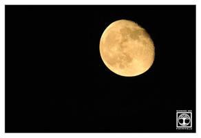 Bad Moon Rising by SchwarzWieEbenholZ