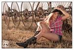 Wild Wild West 6427