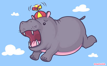 Hippos Should Not Fly