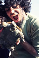 Lets Turtle