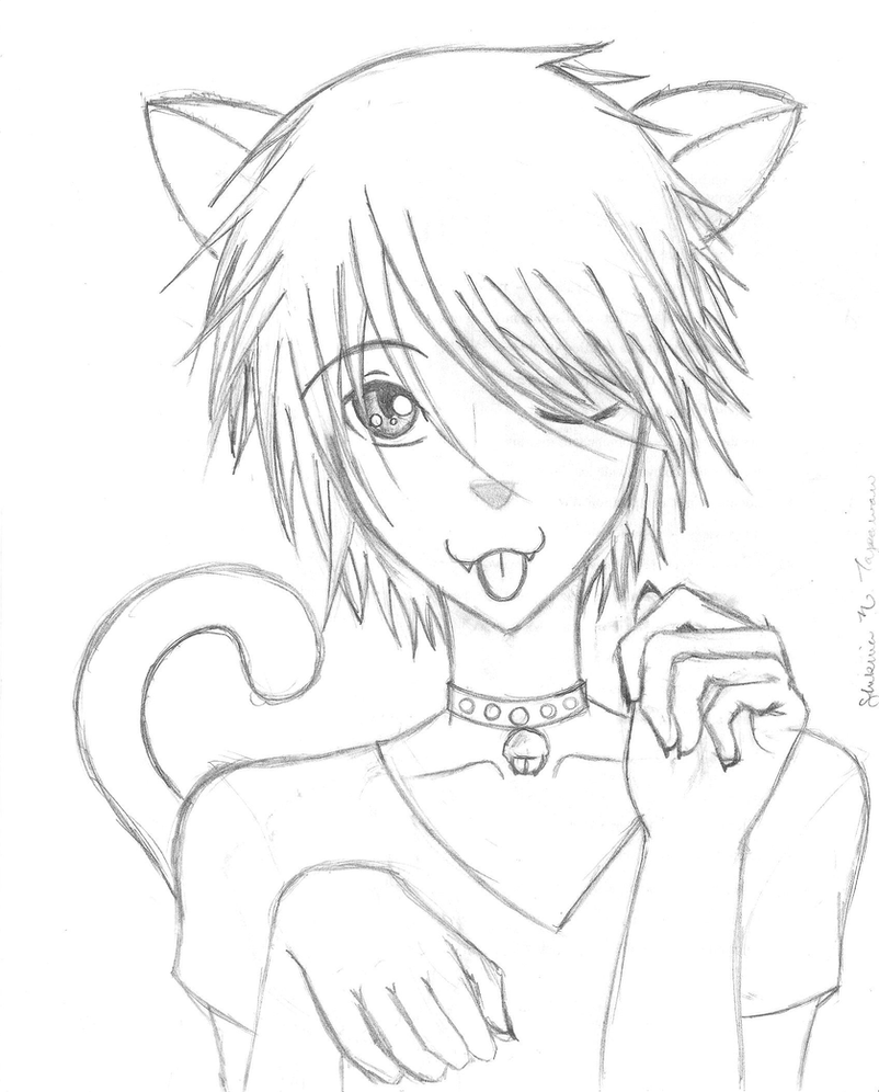 how to draw an anime cat boy