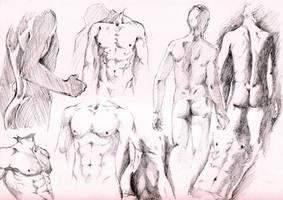 Studies by Masayoshi220