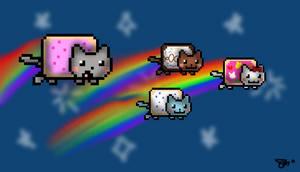 Nyan Cat Babies