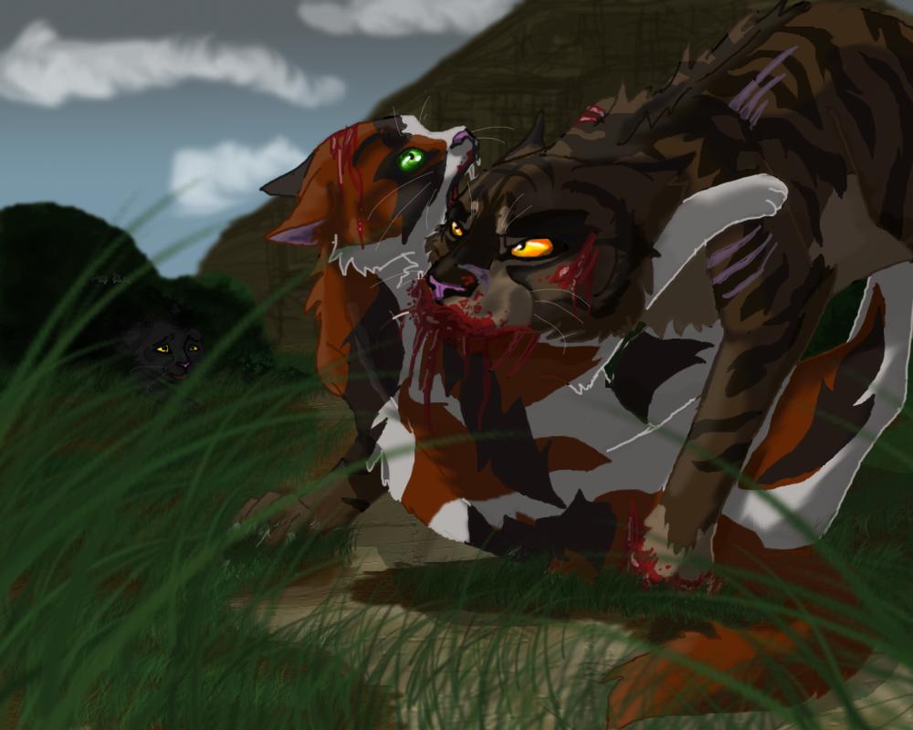 Výsledek obrázku pro warriors cats redtail and tigerclaw